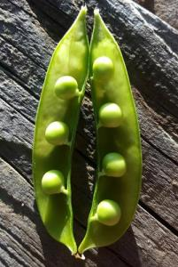 peas on the half shell
